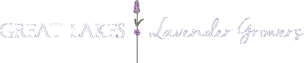 great-lakes-lavender-growers